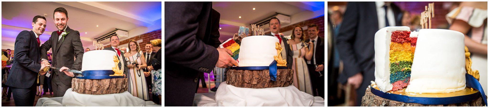 Sopley wedding photographer rainbow cake