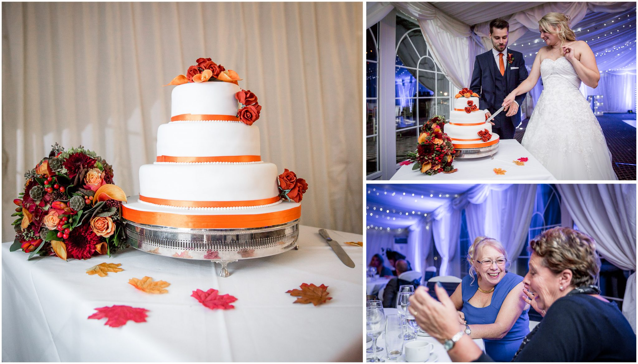 Audleys Wood wedding photograhy cutting the cake